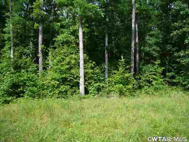 0 Brodies Landing Property Photo - Parsons, TN real estate listing