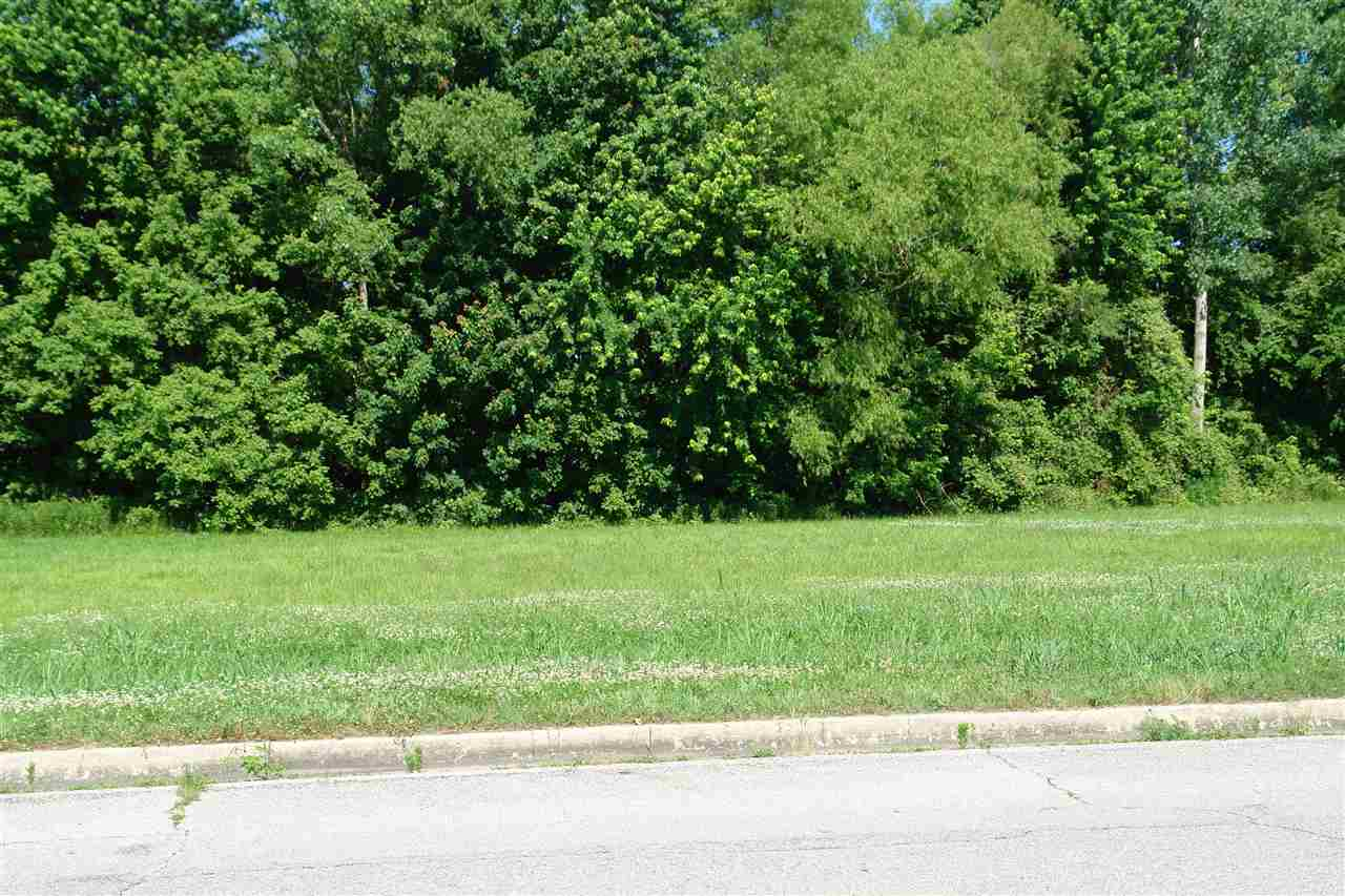 Lot 3 Miles Avenue Property Photo - Union City, TN real estate listing
