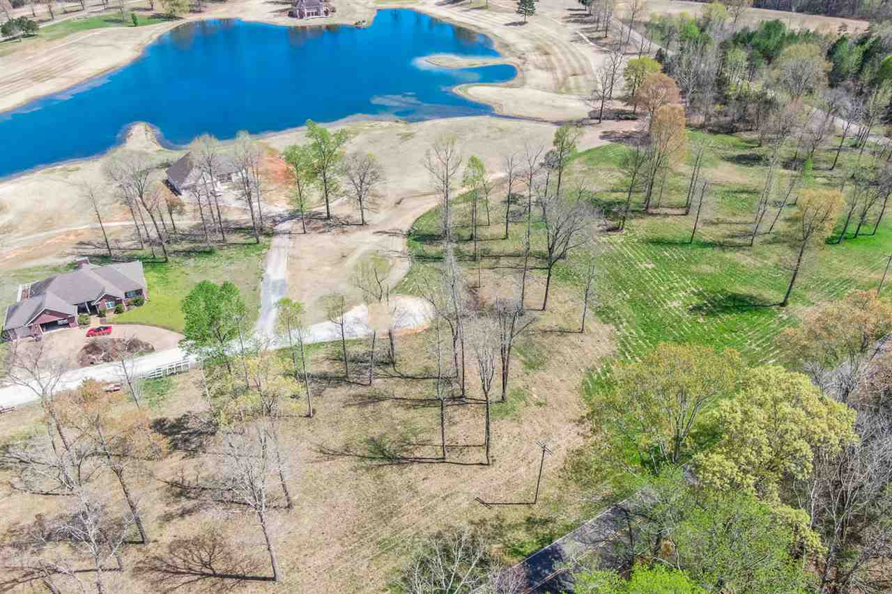 Putt Property Photo - Decaturville, TN real estate listing