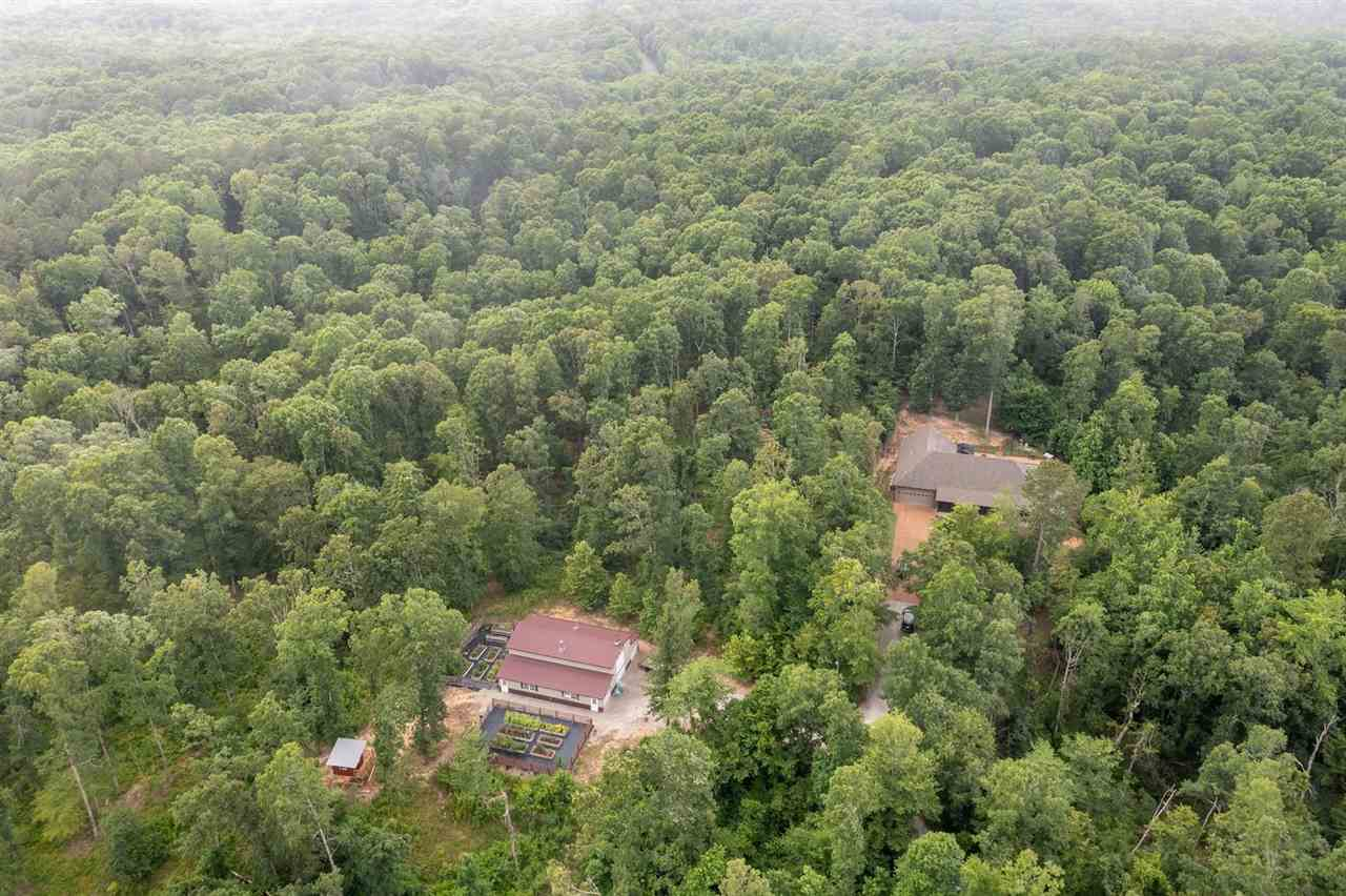 Beech Bluff Real Estate Listings Main Image