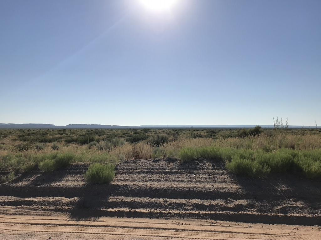 TBD INDIAN Trail Property Photo - Clint, TX real estate listing
