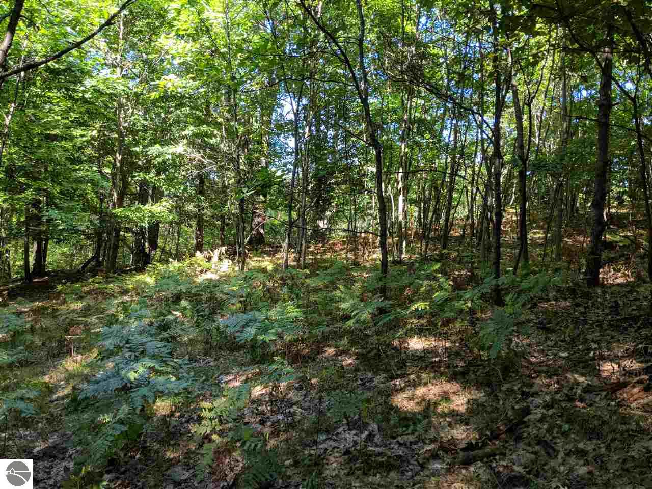 120 Acres Hunters Ridge Property Photo - Kaleva, MI real estate listing