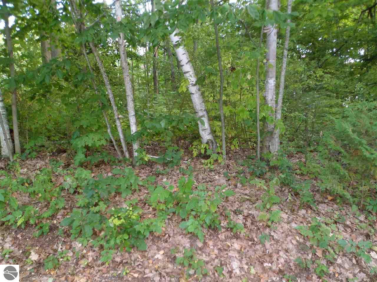 TBD Sunset Drive Property Photo - Weidman, MI real estate listing