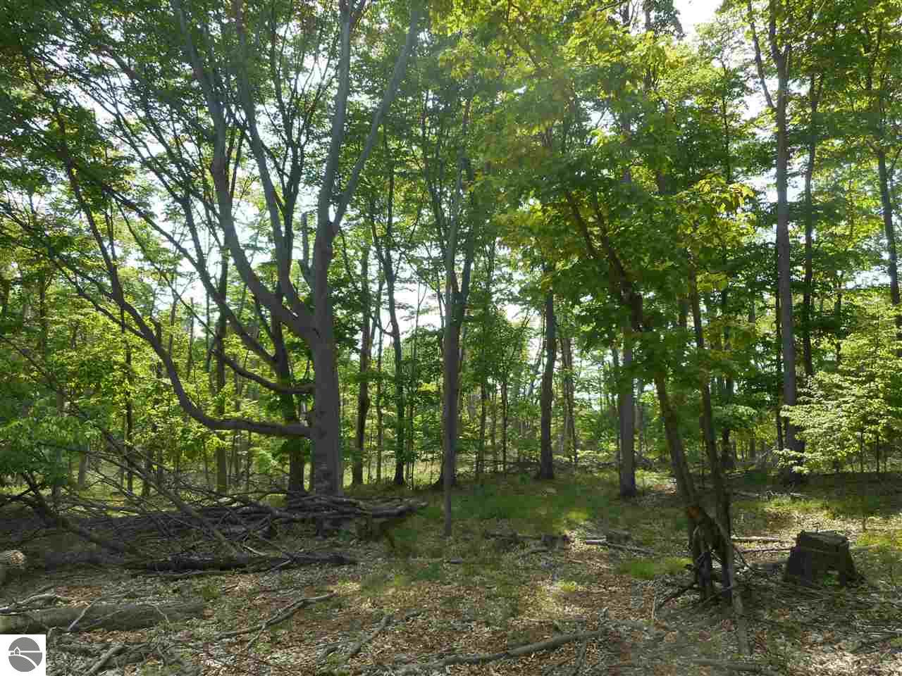 Maxey Road Property Photo - Arcadia, MI real estate listing