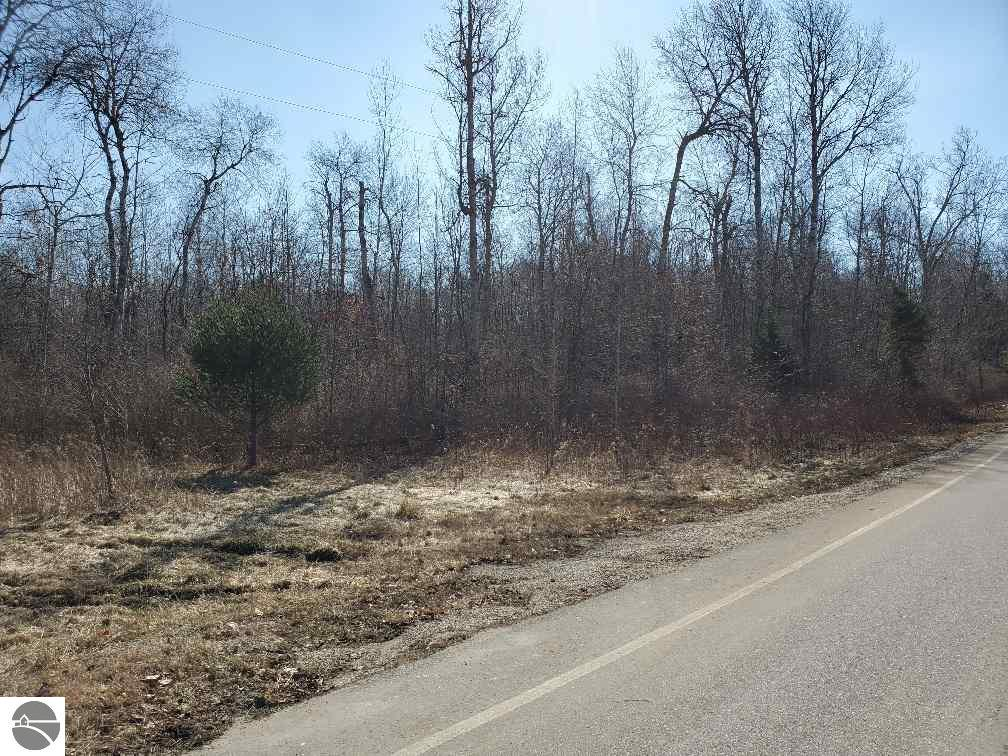 TBD S Magruder Road Property Photo - Shepherd, MI real estate listing