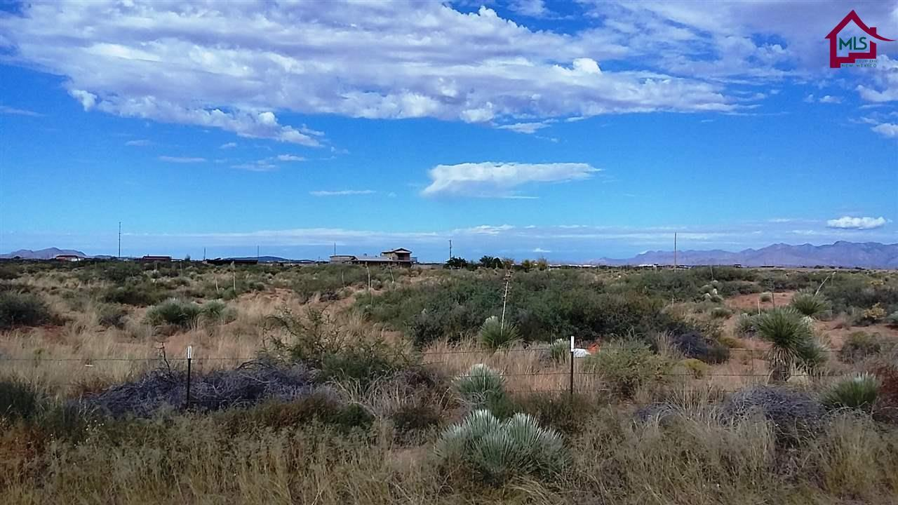 000 Highway 54 Property Photo - Chaparral, NM real estate listing