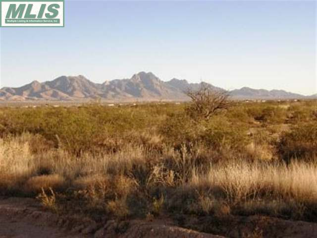 11555 Holman Road Property Photo - Las Cruces, NM real estate listing