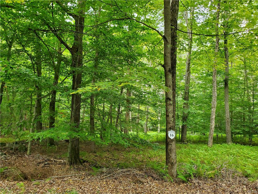 16 Oak Leaf Ln #lot 16 Property Photo
