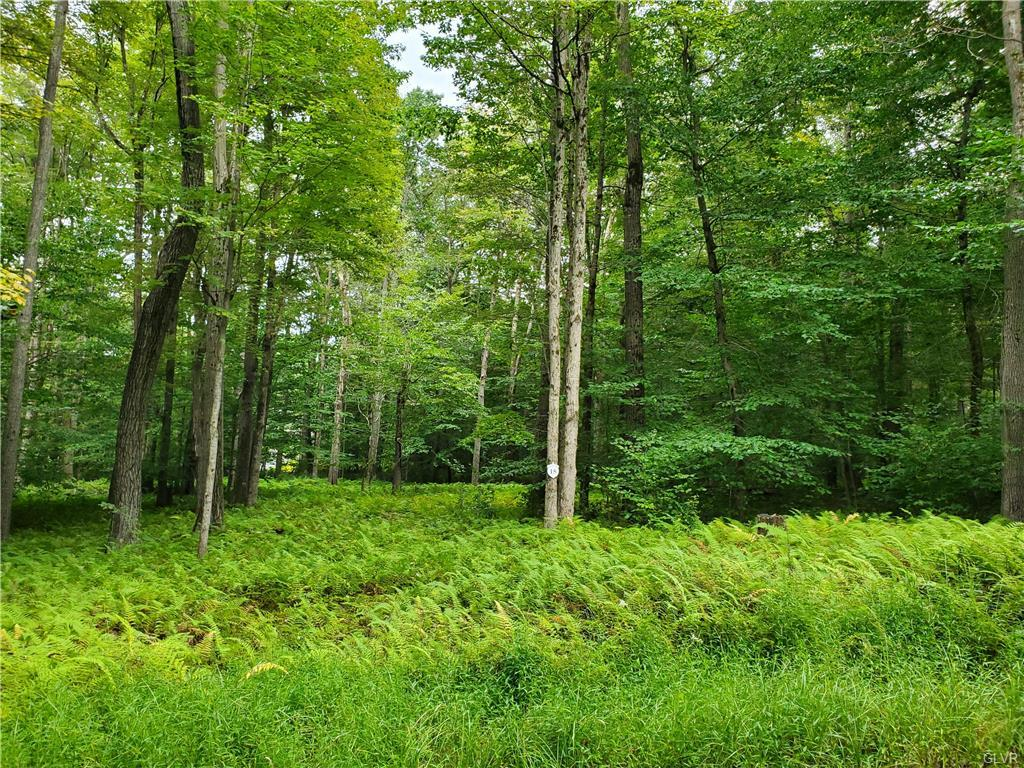 15 Oak Leaf Ln #lot 15 Property Photo