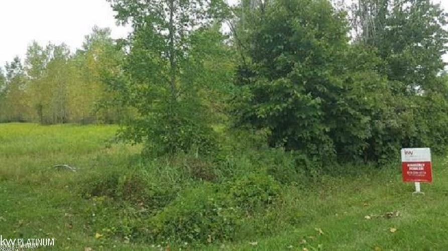 0 Farley Property Photo - Almont, MI real estate listing
