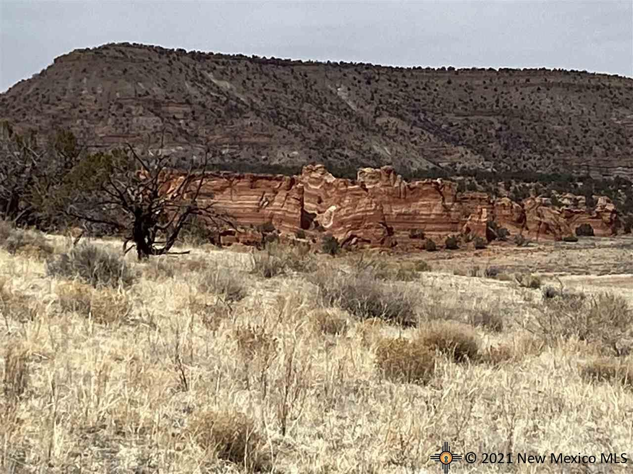 14 Red Rock Ranches, Prewitt, New Mexico, 87045 Property Photo