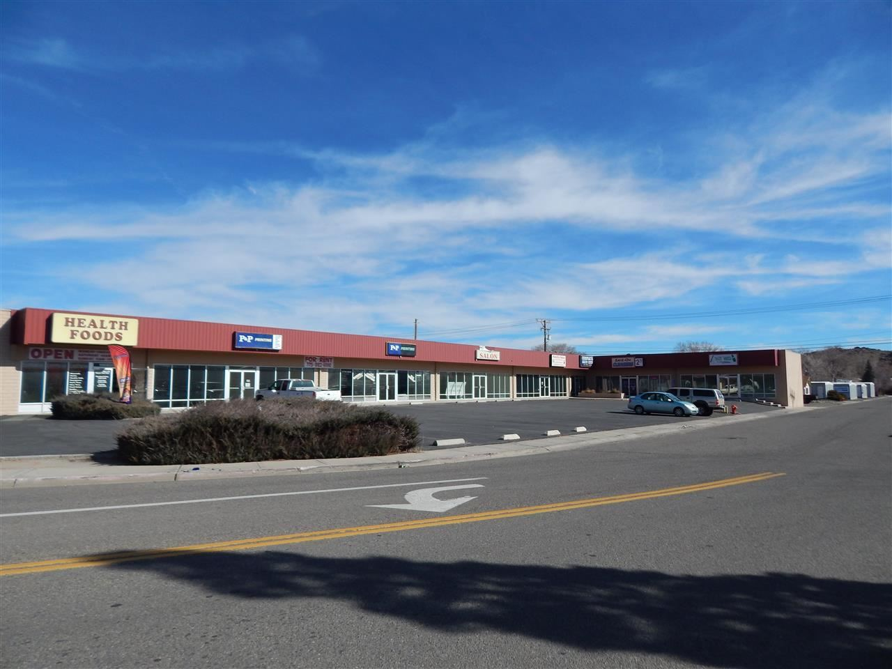 101 Hot Springs Rd #5, Carson City, NV 89706 - Carson City, NV real estate listing