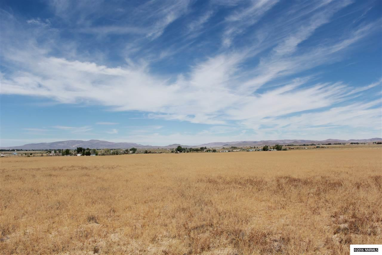 tbd Thurston Property Photo - Yerington, NV real estate listing