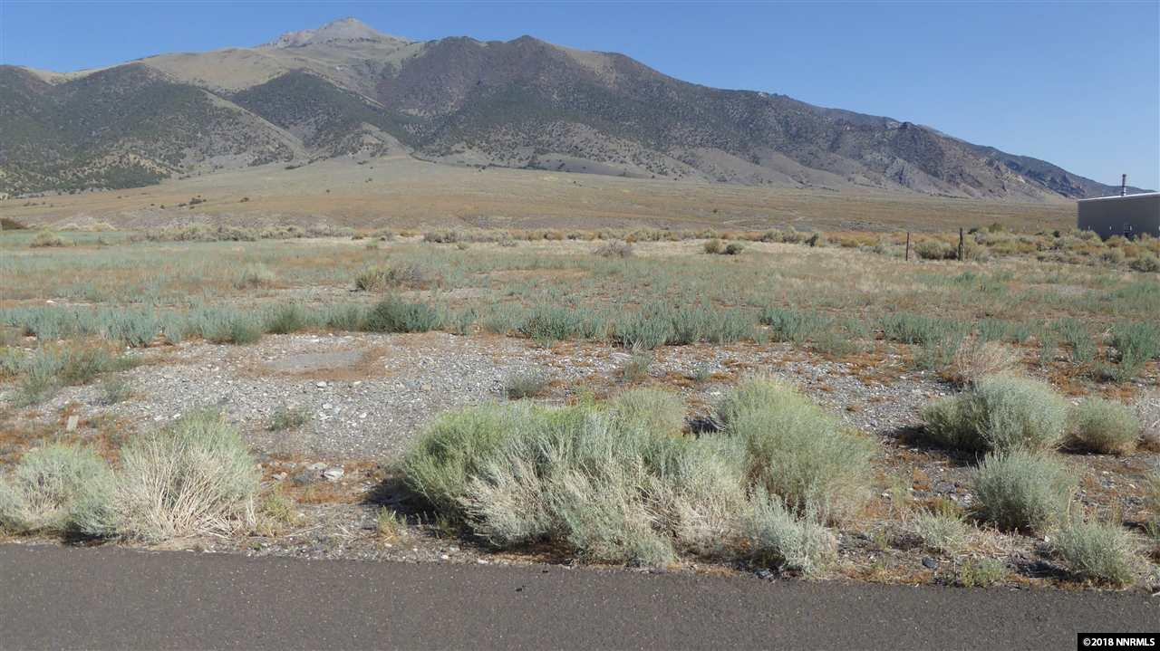 104 Toiyabe Street #7 Property Photo - Austin, NV real estate listing