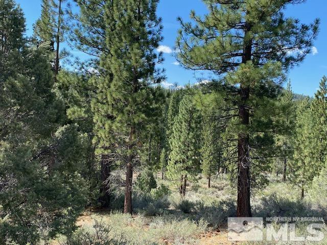 Lot 2 Raymond View #2 Property Photo - Markleeville, CA, CA real estate listing