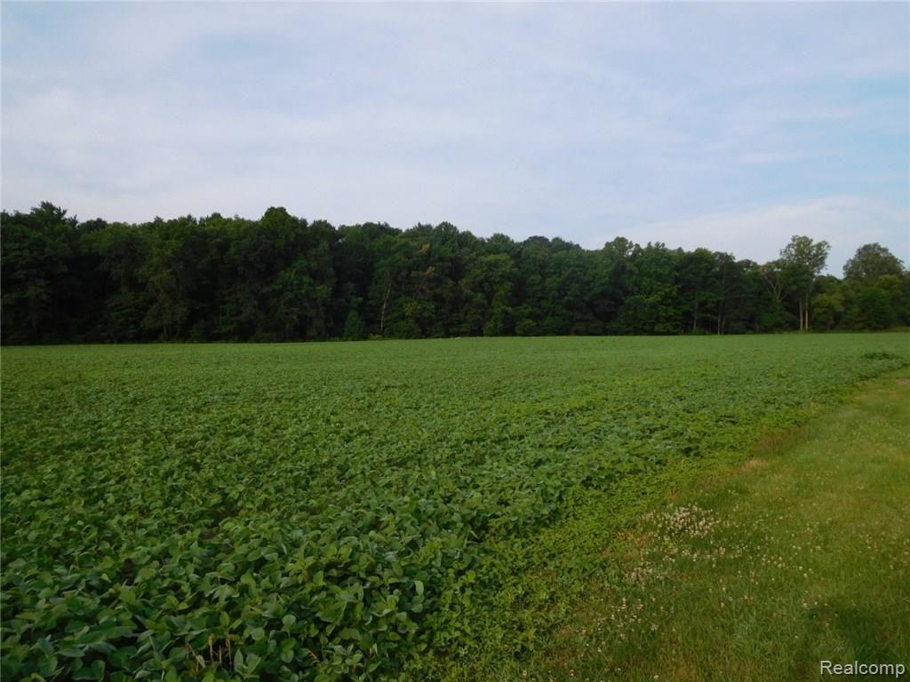 00 25 MILE Road Property Photo - Macomb Twp, MI real estate listing