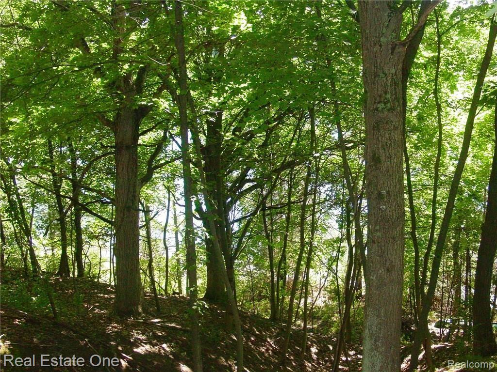 L3 Addaleen Drive, Highland Twp, MI 48357 - Highland Twp, MI real estate listing