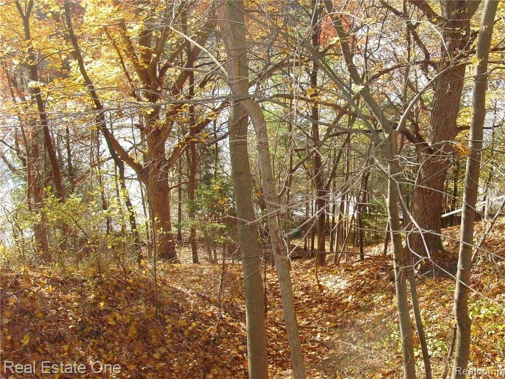 L5 Addaleen Drive Property Photo - Highland Twp, MI real estate listing