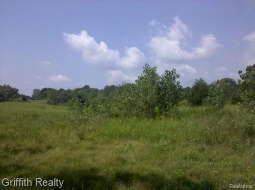 3250 BOWEN Property Photo - Howell Twp, MI real estate listing