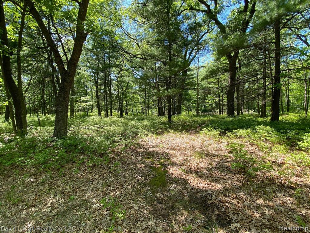 Lot 3 Donny Brook Drive Property Photo - Caseville Twp, MI real estate listing