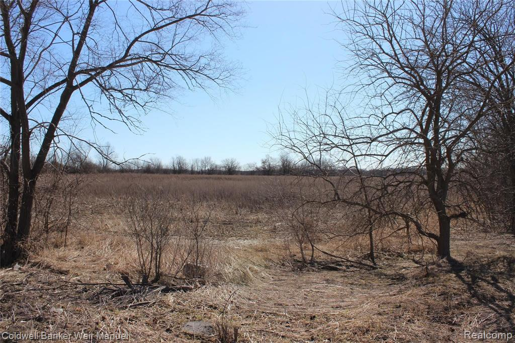 9155 6 MILE RD Property Photo - Salem Twp, MI real estate listing