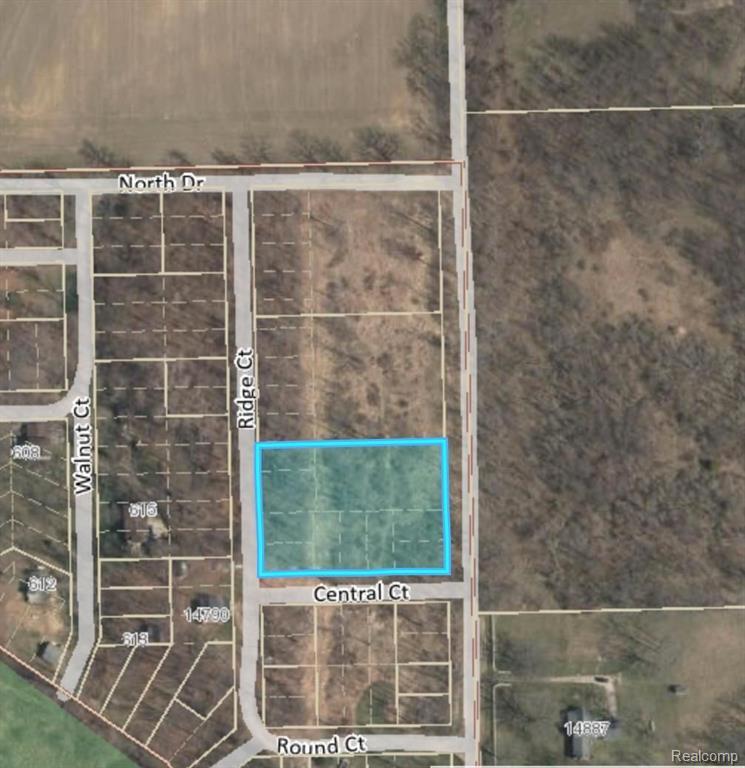 0 Ayres Highway Property Photo - Manchester Twp, MI real estate listing