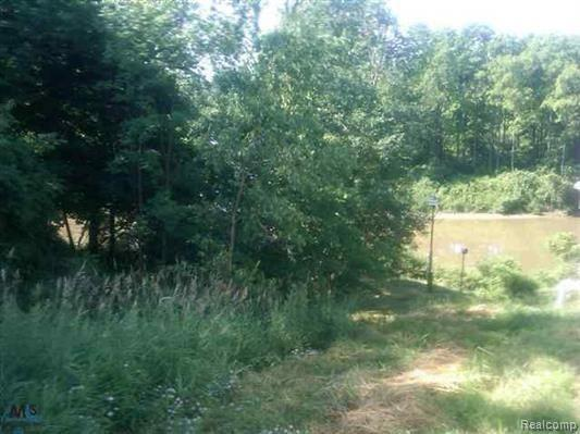 0 North River Road Property Photo - Fort Gratiot Twp, MI real estate listing