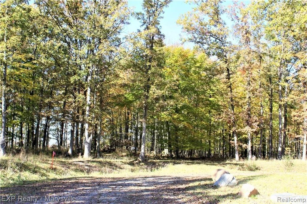 Parcel 6 IMLAY CITY Road Property Photo - Mussey Twp, MI real estate listing