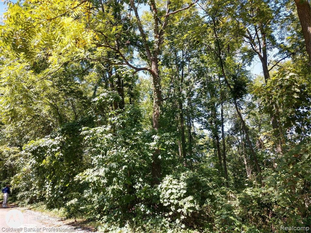 VL N US HIGHWAY 127 Property Photo - Woodstock Twp, MI real estate listing