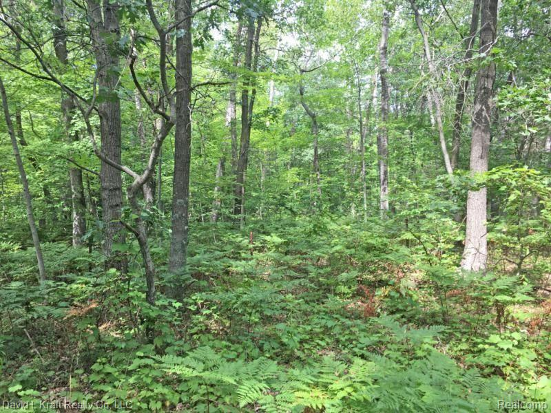 20 21 16 Sand Road Property Photo - Hume Twp, MI real estate listing