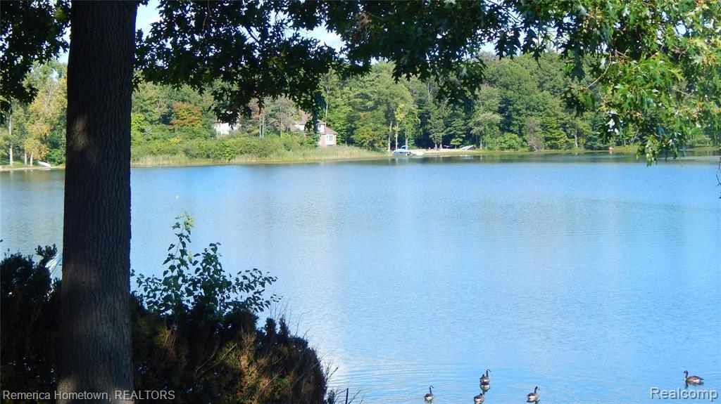 Between 1191 and 1215 Beach Drive Property Photo - Orion Twp, MI real estate listing