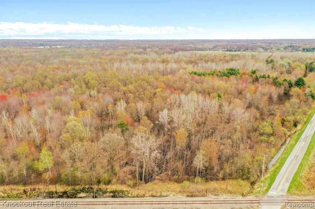 7000 CANADA Road Property Photo - Birch Run Twp, MI real estate listing