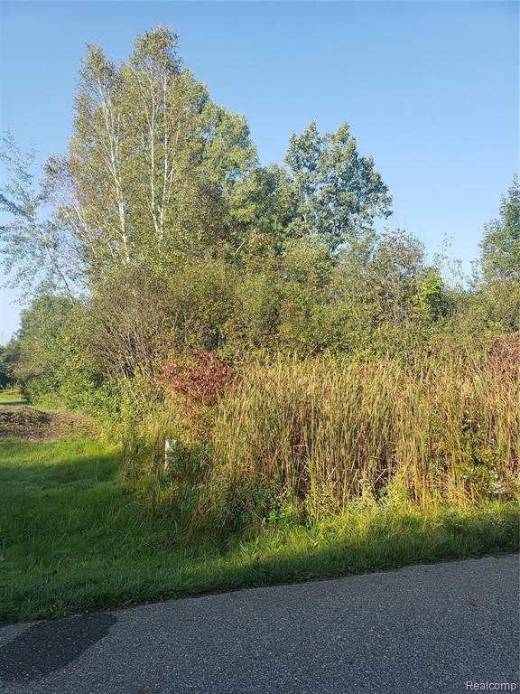 Vacant Land Thread Valley Property Photo