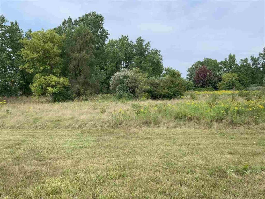 0 WALLI STRASSE Property Photo - BURTON, MI real estate listing