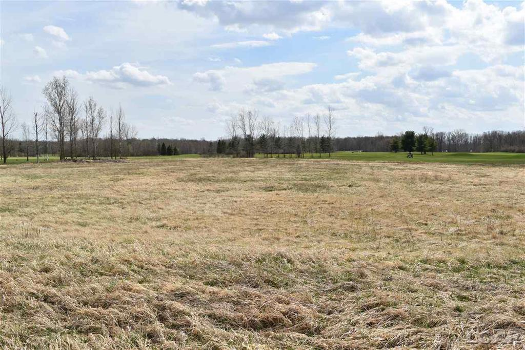 6000 BURTON RD BLK Property Photo - ADRIAN TWP, MI real estate listing