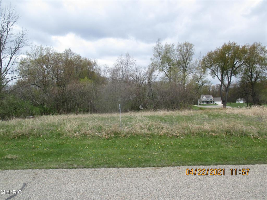 6314 SWEET CLOVER HILLS DR Property Photo - FAYETTE TWP, MI real estate listing