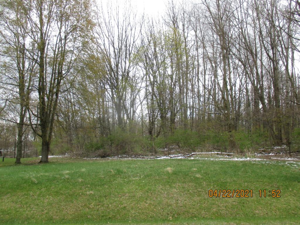 6135 SWEET CLOVER HILLS DR Property Photo - FAYETTE TWP, MI real estate listing