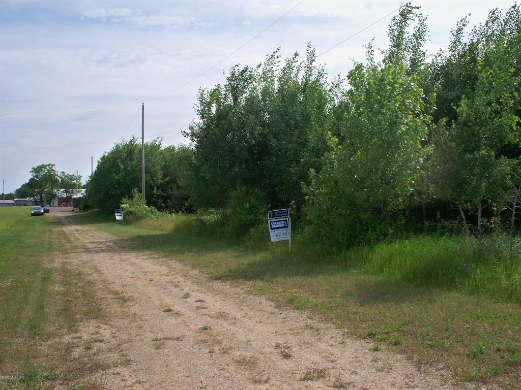 PARCEL 4 Musgrove Highway Property Photo - Sebewa Twp, MI real estate listing