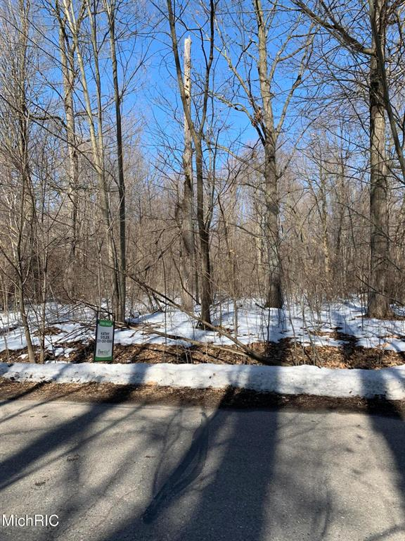 Lot 128 East Shore Drive Property Photo - Douglass Twp, MI real estate listing