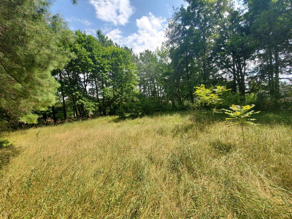 0 E Garfield Street Property Photo - Cadillac, MI real estate listing