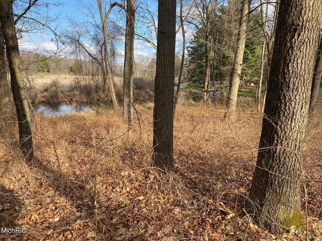 SAUNDERS SHORES Road Property Photo - White Pigeon Vlg, MI real estate listing