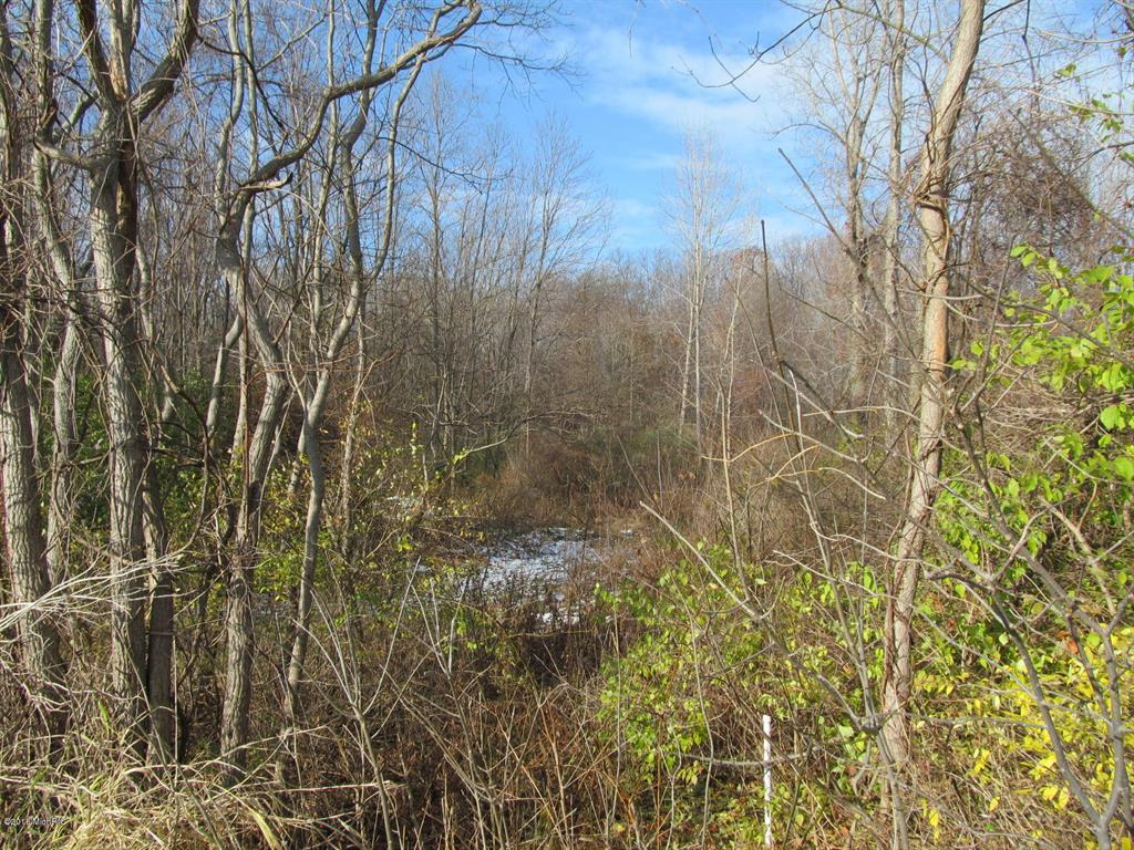 Marquette Woods Road Property Photo - Lincoln Twp, MI real estate listing