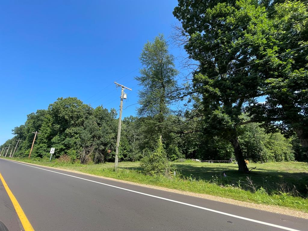 0 Red Arrow Highway Property Photo