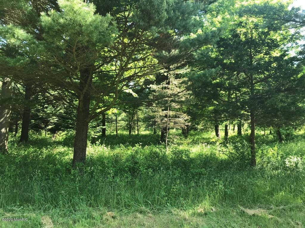 Lot 10 Creekwood Drive Property Photo - Ganges Twp, MI real estate listing