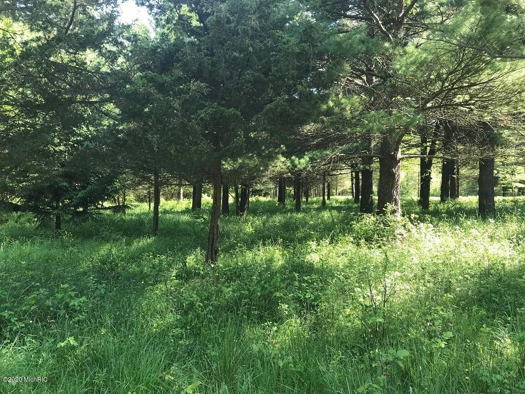 Lot 11 Creekwood Drive Property Photo - Ganges Twp, MI real estate listing