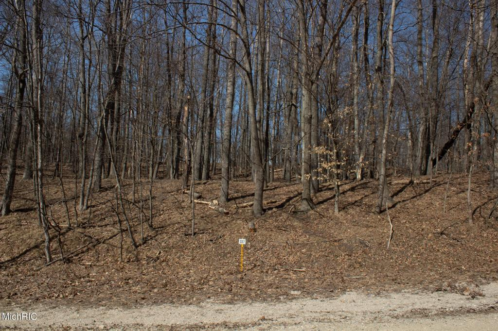 12010 Cheyenne Wells Trail #337 Property Photo - Austin Twp, MI real estate listing