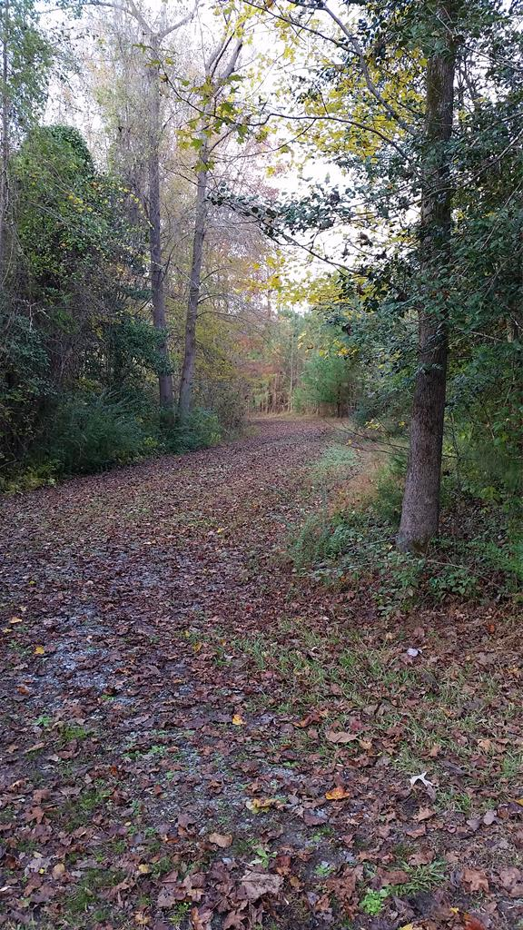 Tbd Swains Mill Road Property Photo