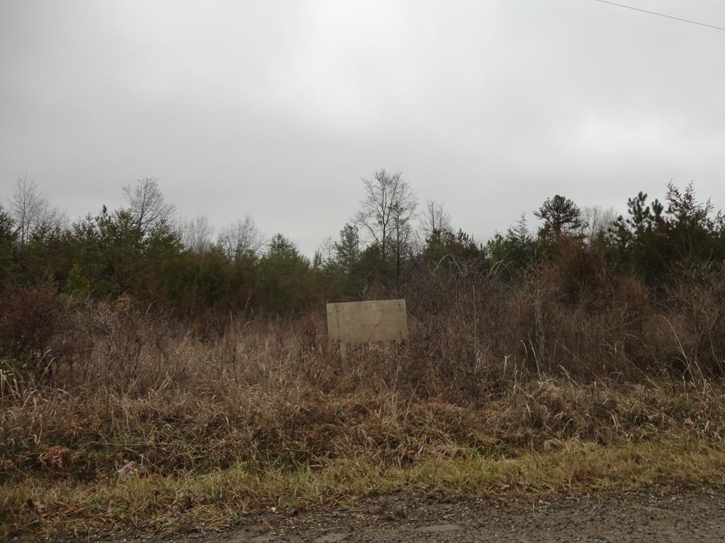 000 Wheatland Road Property Photo - Baskerville, VA real estate listing