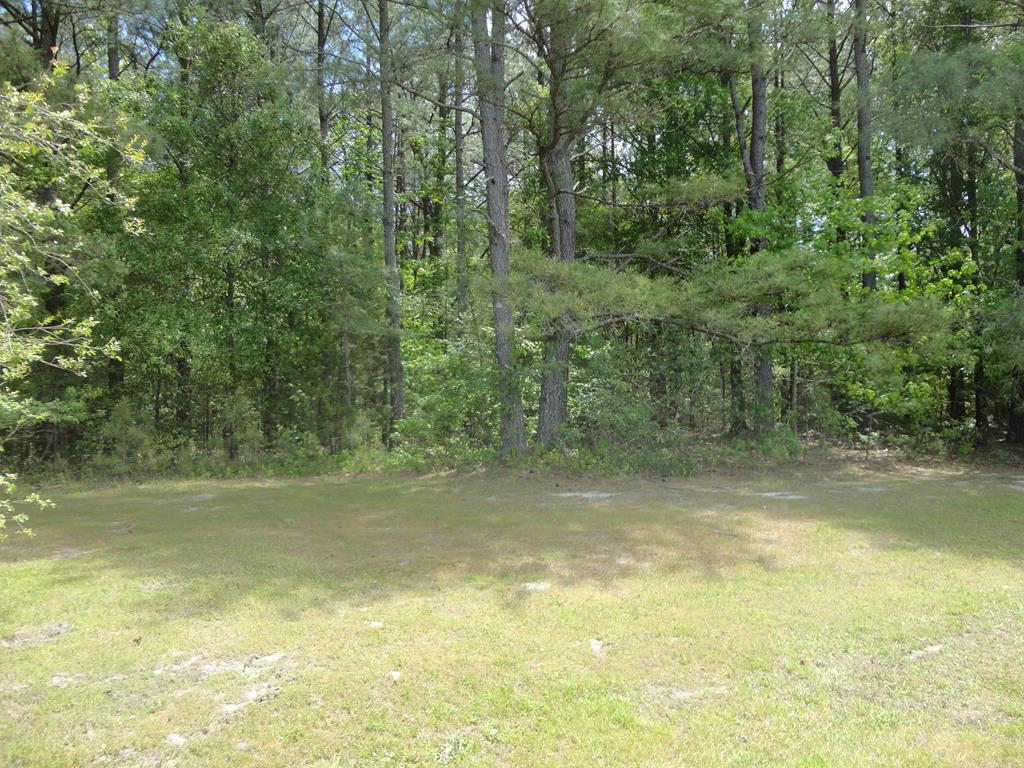 000 Main ST. Property Photo - Alberta, VA real estate listing