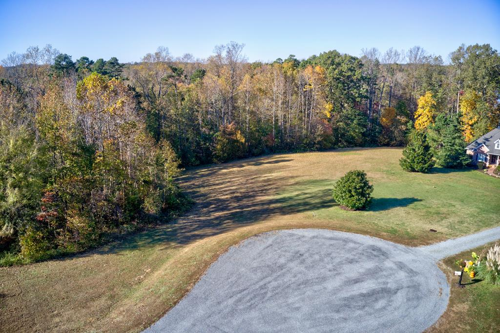 Lot 21r Buffalo Court Property Photo - Buffalo Junction, VA real estate listing